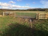 Image showing a kissing gate installed by D W Fencing